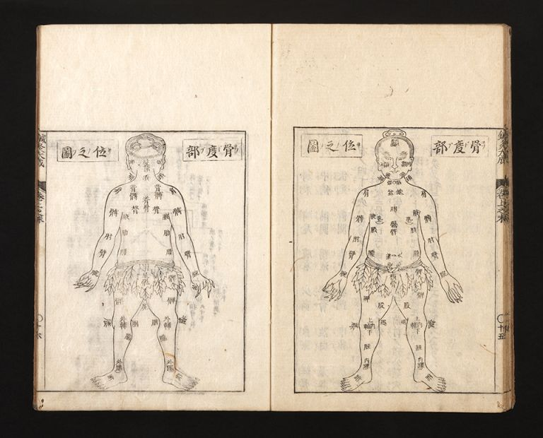 Shinkyu bassui taisei [trans.: Complete Essentials of Acupuncture and Moxibustion]. Ippo OKAMOTO