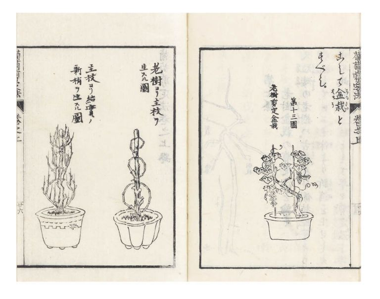 Budo senteiho [trans.: Manual of Cultivation & Pruning Techniques for Grapevines]. Takuuzo FUJIE.