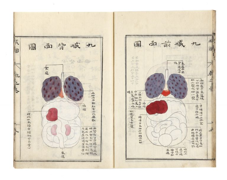Zoshi, narabini furoku [trans.: On the Viscera]. Toyo YAMAWAKI.