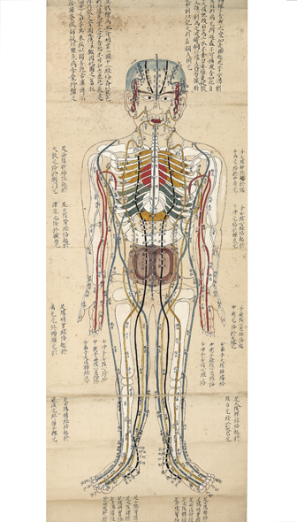 "A finely drawn and colored acupuncture scroll on paper, entitled on the outside ""Jushikei wagosho shinkyuketsu gozoroppu ezu"" [trans.: ""Fourteen Meridians Japanese Explanation: Acupuncture, Moxibustion, Meridians, Five Organs, Six Intestines, illustrated scroll""]. ACUPUNCTURE SCROLL."