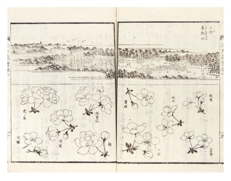 Edo meisho hanagoyomi [Flower Calendar of the Famous Places in Edo]. Sancho OKA
