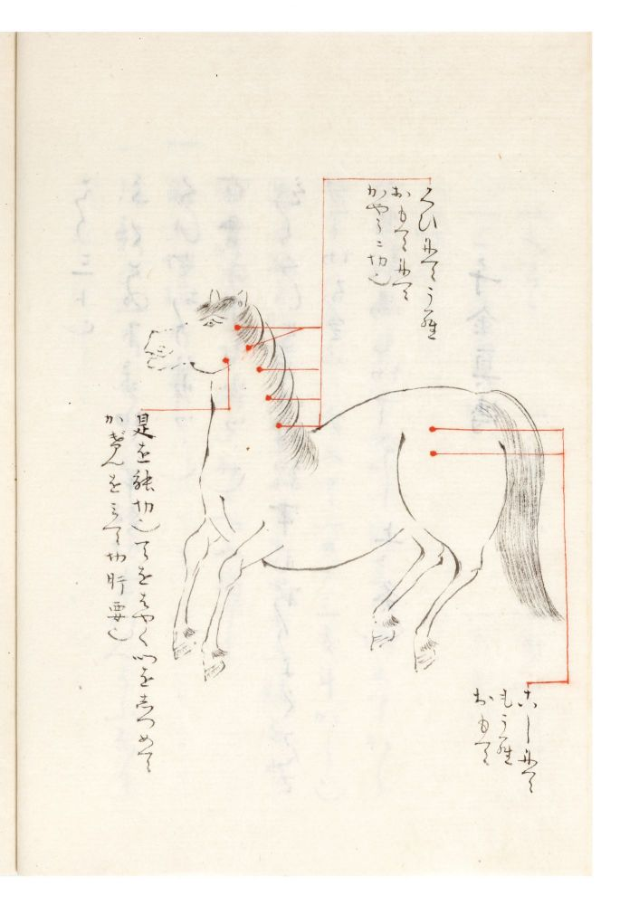 "Collection of manuscripts on equine medicine, entitled on the upper cover of the fine lacquer box containing the manuscripts: ""Tanaka ke hidensho"" [""Secret Writings of the Tanaka Family""]. TANAKA FAMILY EQUINE MEDICINE."