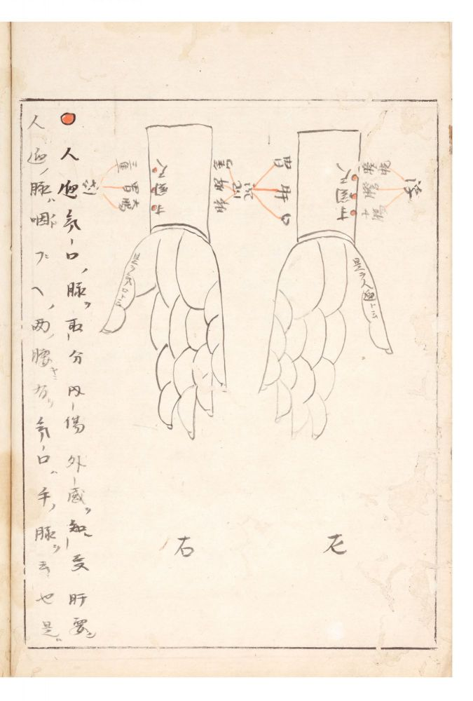 "Manuscript on paper, entitled on label of upper cover ""Myaku sho sasunomiko"" (""Medical Teachings on the Pulse from the Child of God. One Volume""). Dosan MANASE."