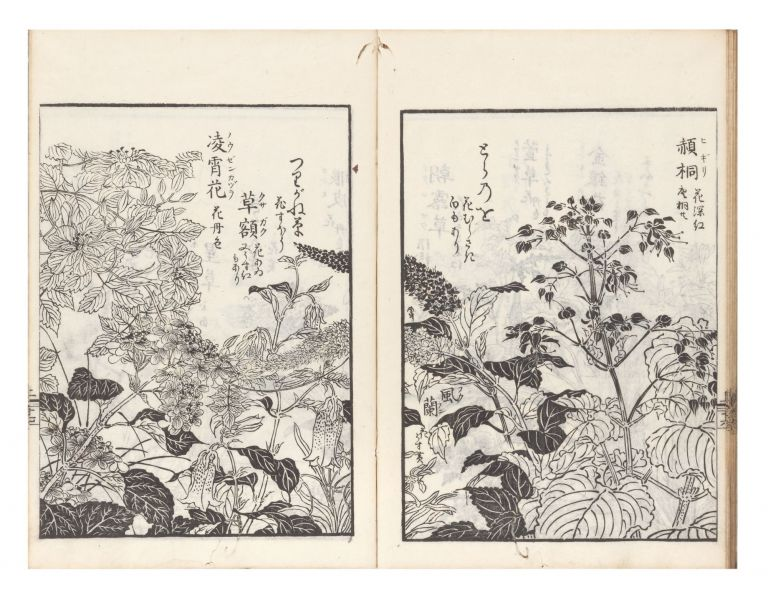 Haikai na no shiori [Haikai Guide to Words, or, Haikai Almanac Infused with Nature]. Sogai TANI, ed., Shigemasa KITAO, artist.