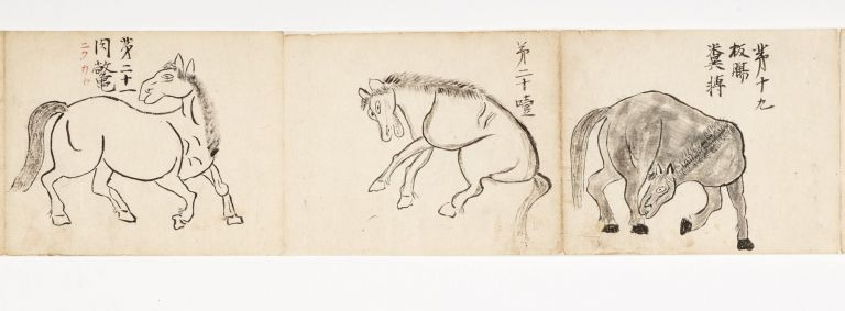 "Manuscript scroll on paper entitled from the accompanying label ""Uma shobyo miyo [or] kenyo no..."