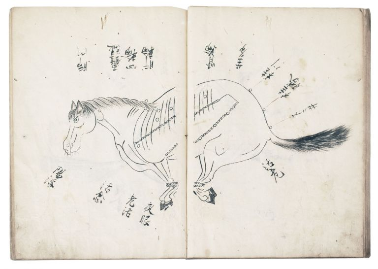 "Manuscript on paper, entitled on upper cover in manuscript ""Uma tsukaikata. Gozo ron hiso""..."