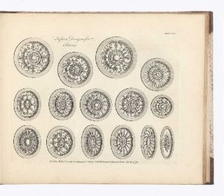 A Book of Ornaments in the Palmyrene Taste containing upwards of Sixty New Designs for Ceilings,...