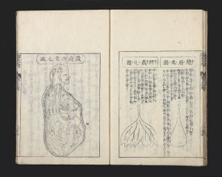 Shinkyu bassui taisei [trans.: Complete Essentials of Acupuncture and Moxibustion].