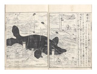 Nihon sankai meibutsu zue [trans.: Illustrated Famous Products of the Mountains and Seas of Japan].