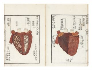 Kaitai hatsumo [trans: Explanation of Human Anatomy].