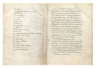 Manuscript on vellum of Opus Agriculturae, 112 leaves (the first blank), small 4to (155 x 115 mm.), single column (text block: 120-125 x 80 mm.), text written in brown ink in a single minuscule chancery hand throughout, first capital letter of each chapter set out in margin, some browning & spotting due to the varying quality of the vellum used or recycled (several leaves are palimpsests), some natural flaws to vellum including small holes, around which the scribe has written text.