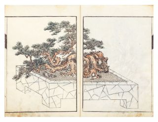 "Senkeiban [Illustrations of ""Tray"" Garden Landscapes"