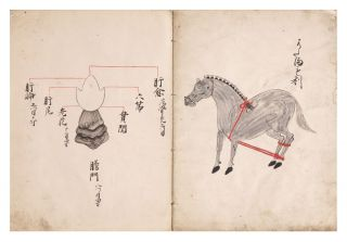 "Manuscript on paper, entitled on upper wrapper ""Gozofu betsu narabini kyudan chiho"" [""The Five Organs Carefully Examined, Also Acupuncture Treatment""]."