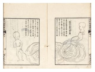 Sanka tangan zuketsu [Obstetrical Insights, Illustrated].