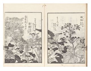 Haikai na no shiori [Haikai Guide to Words, or, Haikai Almanac Infused with Nature